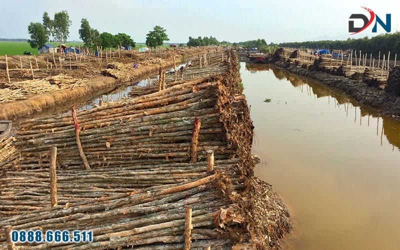 Cây cừ tràm huyện Hòn Đất, Kiên Giang