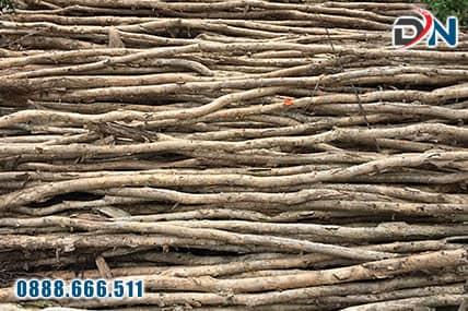 cừ tràm gốc 6-8cm, dài 3-4m-1