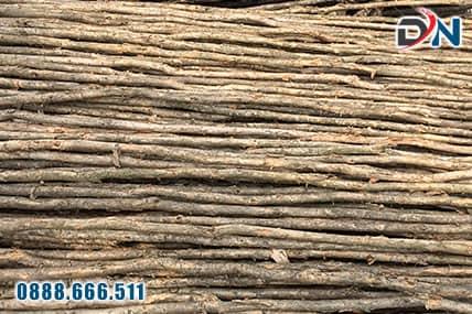cừ tràm gốc 6-8cm, dài 3-4m-2